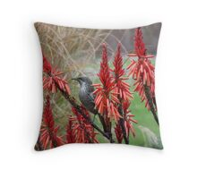 Little Wattle Bird Throw Pillow