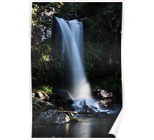 Curtis Falls, Mt Tamborine, Gold Coast-Beaudesert Area Poster