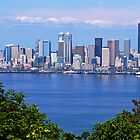 Seattle Across Elliott Bay by Tamara Valjean