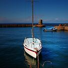 DUNURE HARBOUR by leonie7