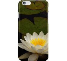 Capistrano Water Lilies iPhone Case/Skin
