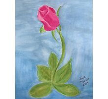 Pink Rose Watercolor Painting Photographic Print