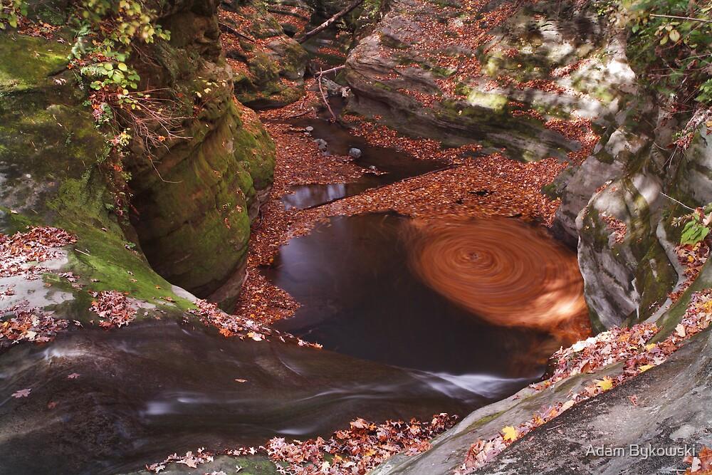 The Whirlpool by Adam Bykowski