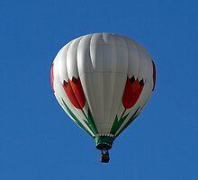 Flying Tulip! by Gene Walls