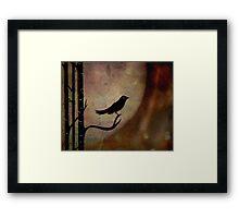 Singing bird ... Framed Print