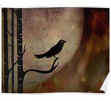 Singing bird ... Poster
