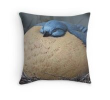 Stil Life Captured  Throw Pillow