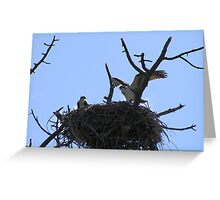 I Rule this Roost!! Greeting Card