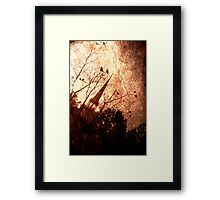 Midnight Mass Framed Print