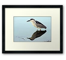NIght Heron Reflections Framed Print