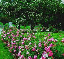 Rose Garden On Burlap by Linda Miller Gesualdo