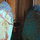trunk hood, bodie by karen peacock