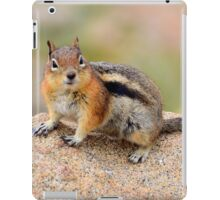 Furry friend iPad Case/Skin