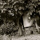 under the lemon tree by Chicachica