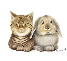 CAT AND RABBIT BY FLORENCE  by florencelee