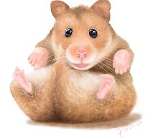 BABY HAMSTER WAITING FOR HUG by florencelee