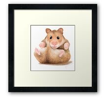 BABY HAMSTER WAITING FOR HUG Framed Print