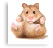 BABY HAMSTER WAITING FOR HUG Canvas Print