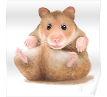 BABY HAMSTER WAITING FOR HUG Poster