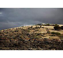 seascapes #218, orange lichen line Photographic Print