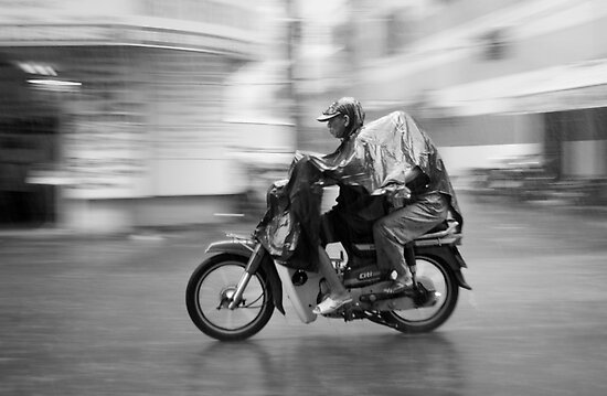 Moto in the Rain by Lesley Williamson