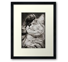 Not Another Photo... Framed Print