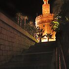 Torre del Oro by Paul Pasco