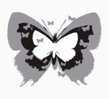 Lepidoptera by Benjamin Nitschke