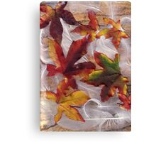 Feathers and Leaves Canvas Print