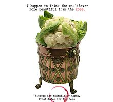 I happen to think the cauliflower more beautiful than the rose by Rebel Rebel