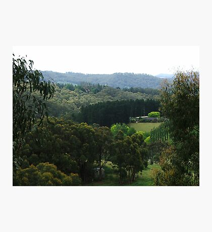 Glorious Hills View Photographic Print