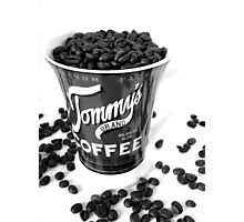 Tommy Coffee  Photographic Print
