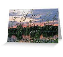 A Reflection Beyond The Grass Greeting Card