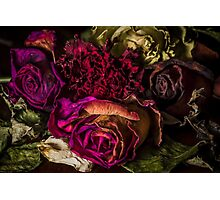 Floral's End Photographic Print