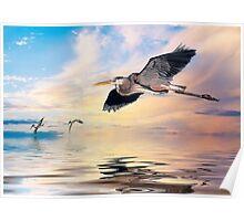 Gulf Sunset Reflections Poster