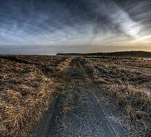 Morrison's Beach by TheNatureOfThings