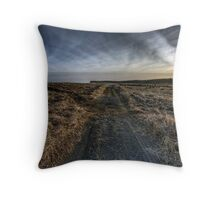 Morrison's Beach Throw Pillow