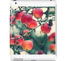 winter apples iPad Case/Skin