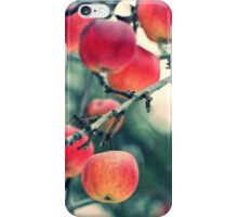 winter apples iPhone Case/Skin