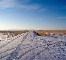 Montana sky by Anne Frizell