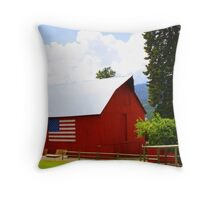 Plain Painted Red Throw Pillow