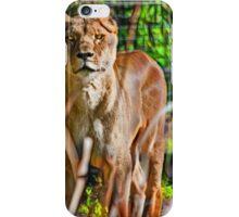 Watchful Lioness iPhone Case/Skin