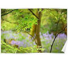 """""""Amidst Bluebell Woods"""" Poster"""