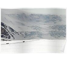Athabasca Glacier Close-Up Poster