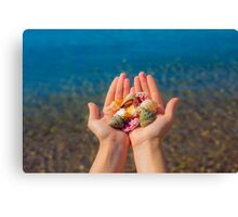 Hands present seashells on the beach first person view  Canvas Print