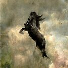 """I-phone and I-pod case """"Friesian Horse"""" by scatharis"""