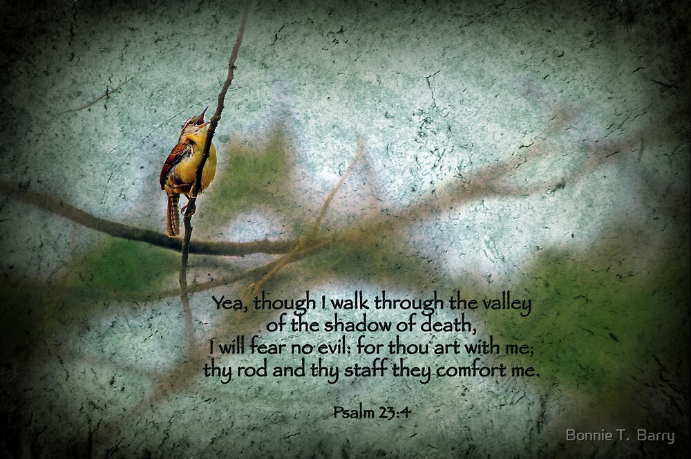 Psalm 23 by Bonnie T.  Barry