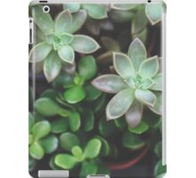 Garden Green Succulents iPad Case/Skin