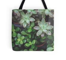 Garden Green Succulents Tote Bag