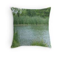 Moses Reeds By The Lake Throw Pillow
